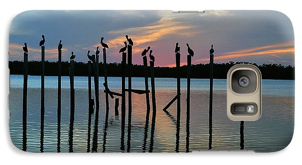 Galaxy Case featuring the photograph Pelican Resting End Of Day by Dan Friend