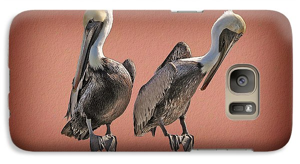 Galaxy Case featuring the photograph Pelicans Posing by Dan Friend