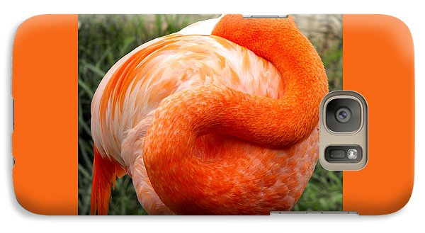 Galaxy Case featuring the photograph Pink Flamingo Sleep by Rebecca Margraf