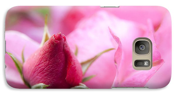 Galaxy Case featuring the photograph Pink Rose by Jeannette Hunt