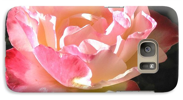 Galaxy Case featuring the photograph Pink Rose by Sue Halstenberg