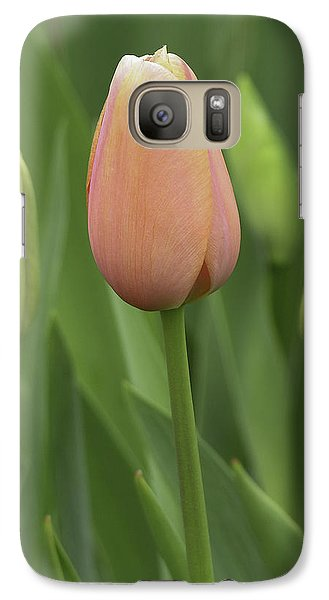 Galaxy Case featuring the photograph Pink Tulip With Buds by Betty Denise