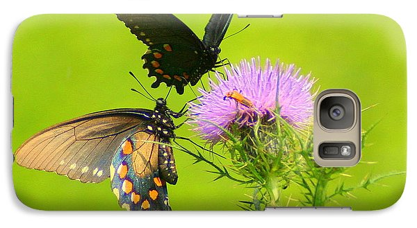 Galaxy Case featuring the photograph Pipevine Swallowtails In Tandem by Laurel Talabere
