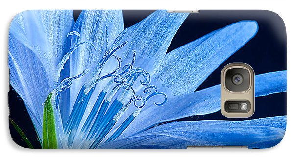 Galaxy Case featuring the photograph Pistil's Of Chicory by Randall Branham