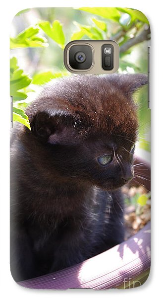Galaxy Case featuring the photograph Planted Kitten by Tannis  Baldwin