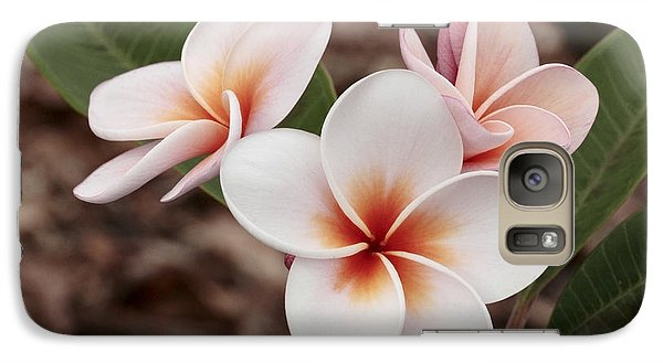 Galaxy Case featuring the photograph Plumeria   Kona Hawii by James Steele