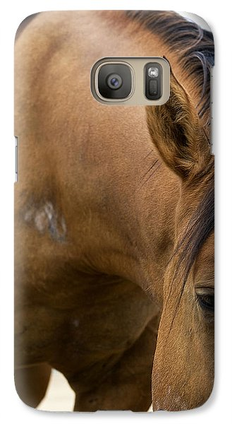 Galaxy Case featuring the photograph Curious Pony by Lorraine Devon Wilke