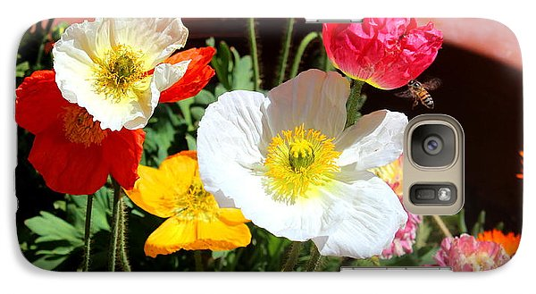 Galaxy Case featuring the photograph Poppy Galore by M Diane Bonaparte