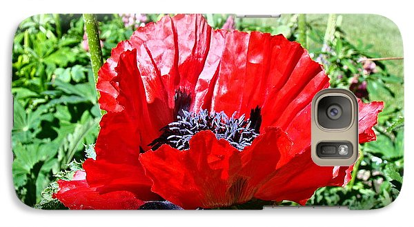 Galaxy Case featuring the photograph Poppy by Nick Kloepping