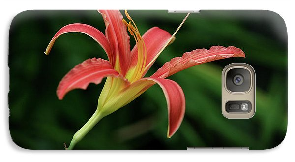 Galaxy Case featuring the photograph Popsicle Bloom by Lorraine Devon Wilke
