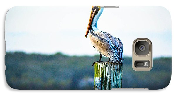 Galaxy Case featuring the photograph Posing Pelican by Shannon Harrington