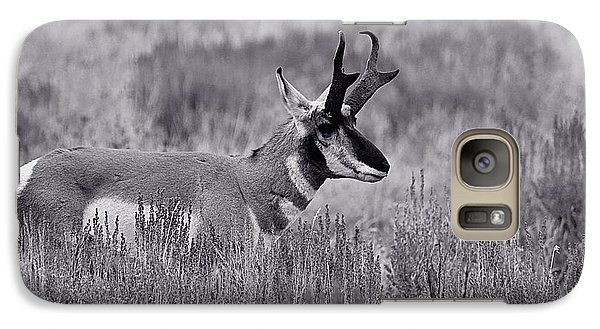 Galaxy Case featuring the photograph Pronghorn  by Eric Tressler
