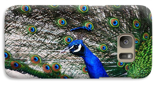 Proud Peacock Galaxy Case by Sheryl Cox