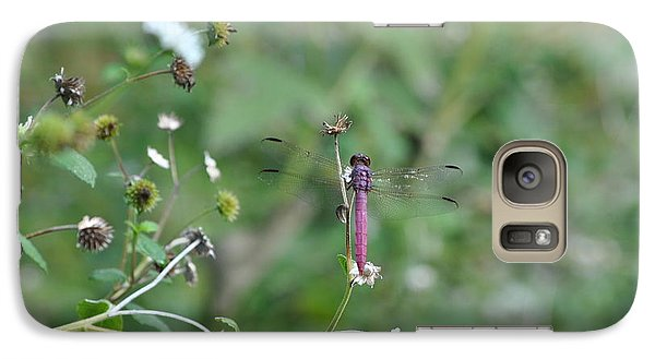 Galaxy Case featuring the photograph Purple Dragon Fly by Jodi Terracina