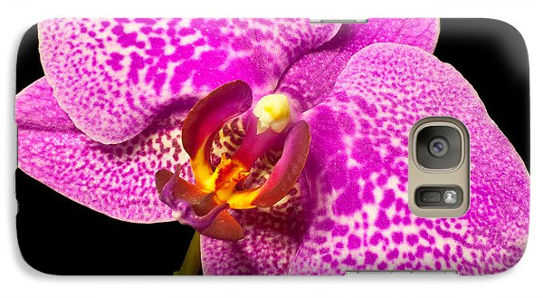 Galaxy Case featuring the photograph Purple Orchid Bloom by Michael Waters