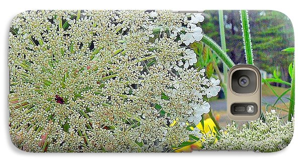 Galaxy Case featuring the photograph Queen Anne's Lace by Pamela Patch