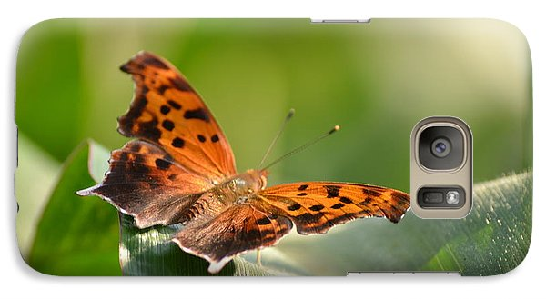 Galaxy Case featuring the photograph Question Mark Butterfly by JD Grimes