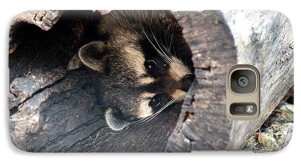 Galaxy Case featuring the photograph Raccoon In Hiding by Kathy  White