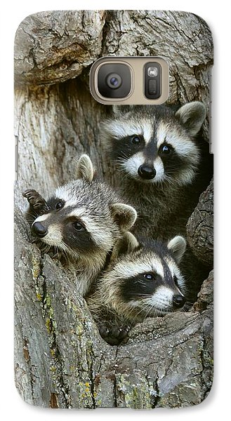Galaxy Case featuring the photograph Raccoons Peeking Out by Myrna Bradshaw