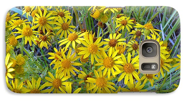 Galaxy Case featuring the photograph Ragwort - Tansy by Pamela Patch
