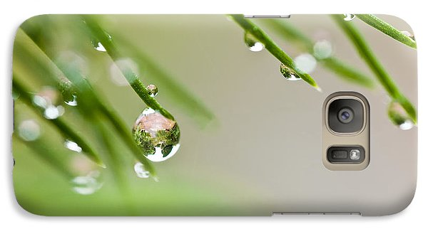 Galaxy Case featuring the photograph Raindrops On Needles by Trevor Chriss