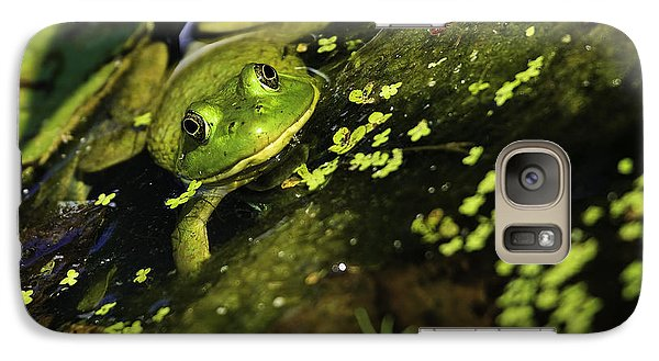 Galaxy Case featuring the photograph Rana Clamitans Or Green Frog by Perla Copernik