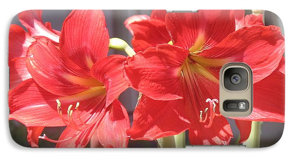 Galaxy Case featuring the photograph Red Amaryllis by Kume Bryant