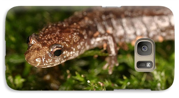 Red-backed Salamander Galaxy Case by Ted Kinsman