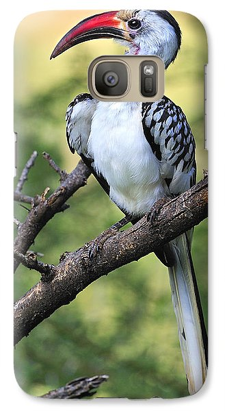 Red-billed Hornbill Galaxy S7 Case by Tony Beck