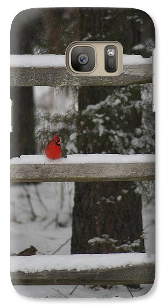 Galaxy Case featuring the photograph Red Bird by Stacy C Bottoms