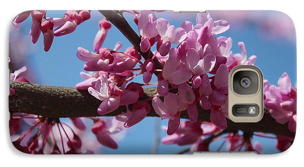 Galaxy Case featuring the photograph Red Bud In Bloom by Kathleen Holley