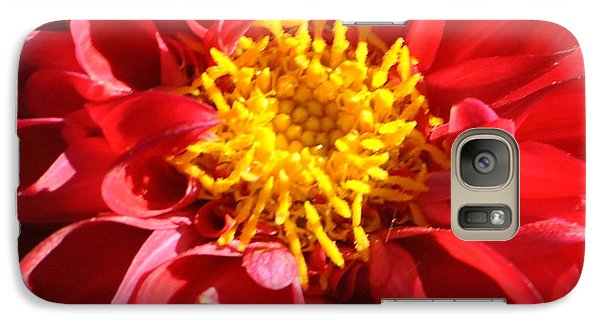 Galaxy Case featuring the photograph Red Dahlia by Jodi Terracina