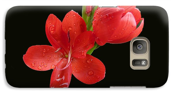 Galaxy Case featuring the photograph Red Flower by Lynn Bolt