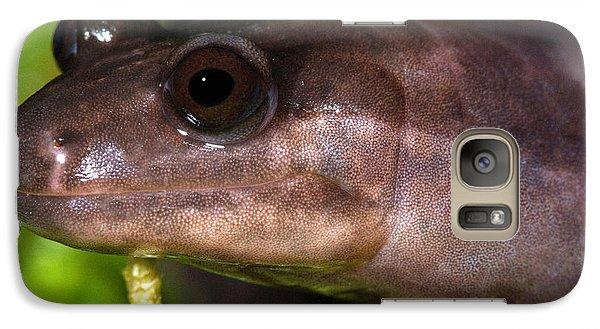 Red Hills Salamander Galaxy Case by Dant� Fenolio