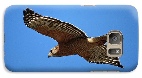Red Shouldered Hawk In Flight Galaxy Case by Carol Groenen