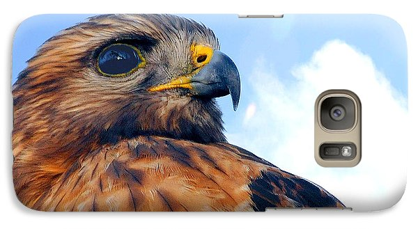 Galaxy Case featuring the photograph Red Shouldered Hawk Portrait by Dan Friend