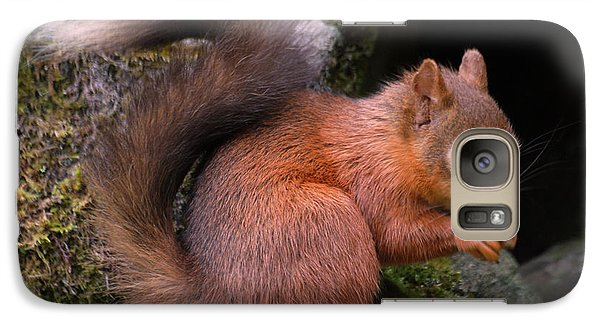 Galaxy Case featuring the photograph Red Squirrel by Lynn Bolt