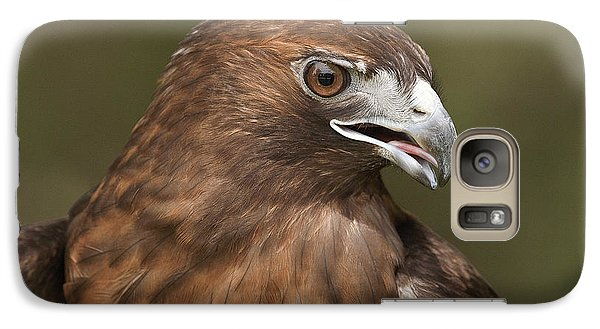 Galaxy Case featuring the photograph Red-tailed Hawk by Doug Herr
