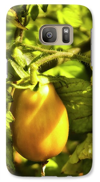 Galaxy Case featuring the photograph Ripening Roma by Albert Seger