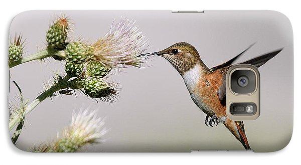 Galaxy Case featuring the photograph Rufous Hummingbird by Doug Herr