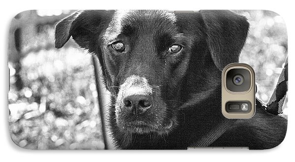 Galaxy Case featuring the photograph Sad Eyes by Eunice Gibb