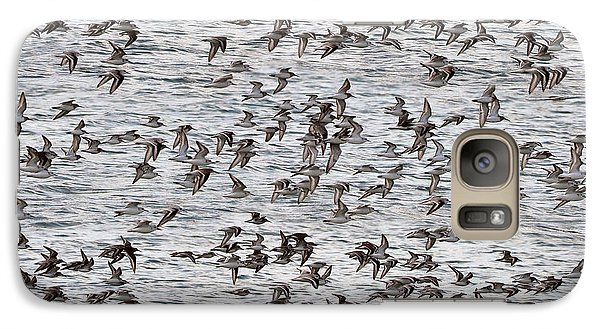 Galaxy Case featuring the photograph Sandpipers In Flight by Dan Friend