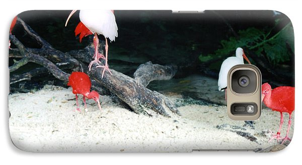 Galaxy Case featuring the photograph Scarlet Ibis And Spoonbills by Maureen E Ritter