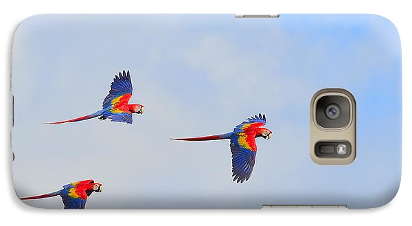 Scarlet Macaws Galaxy Case by Tony Beck