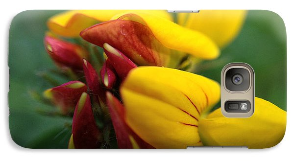 Galaxy Case featuring the photograph Scotch Broom by Chriss Pagani