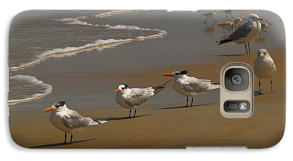 Galaxy Case featuring the photograph Sand And Sea Birds by Barbara Middleton