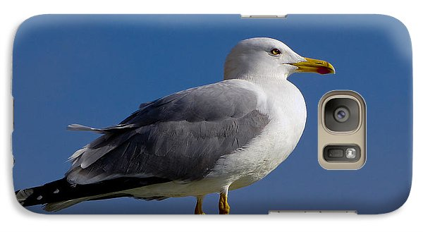 Galaxy Case featuring the photograph Seagull by David Gleeson