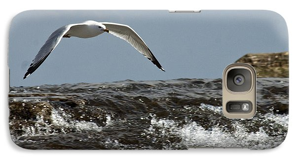 Galaxy Case featuring the photograph Seagull Overt The Rapids by Darleen Stry