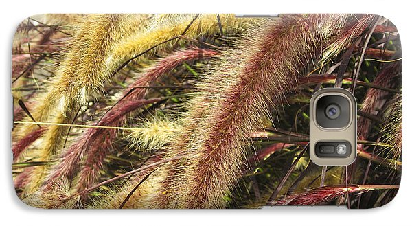 Galaxy Case featuring the digital art Setaria Italica Red Jewel - Red Bristle Grass by Anne Mott