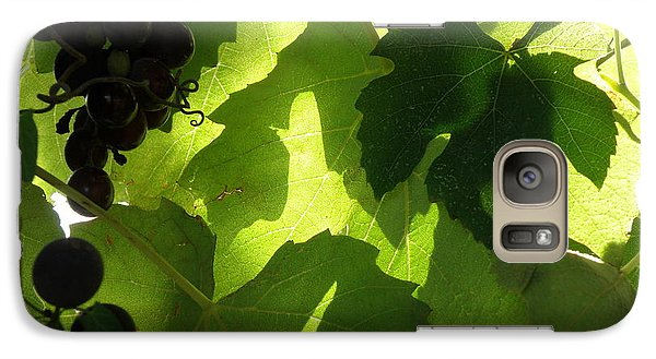 Galaxy Case featuring the photograph Shadow Dancing Grapes by Lainie Wrightson
